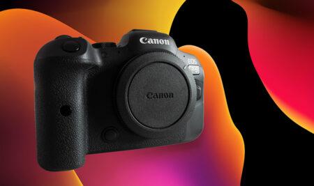 Canon R6, stary niedźwiedź przestał spać?